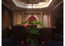 重庆值得你去体验的日系风格洗浴Spa私密会所