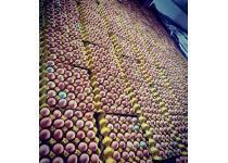 主城區雞蛋(鮮雞蛋)批發,主城送貨上門